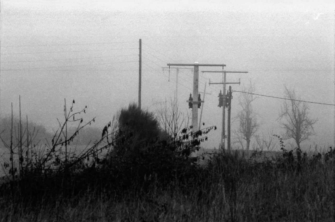 galicia en niebla