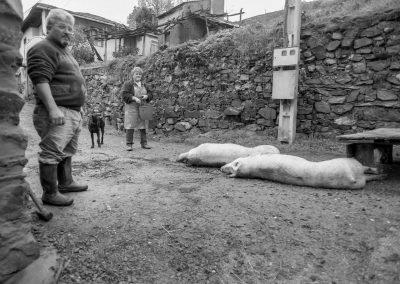 matanza del cerdo 005_ariadna creus