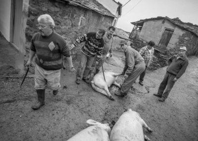 matanza del cerdo 015_ariadna creus