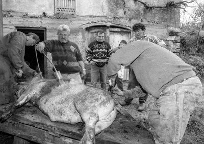 matanza del cerdo 019_ariadna creus