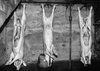 matanza del cerdo 029_ariadna creus