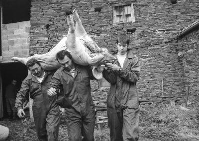 matanza del cerdo 030_ariadna creus