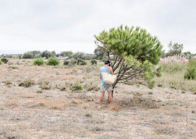hombre orina en pino